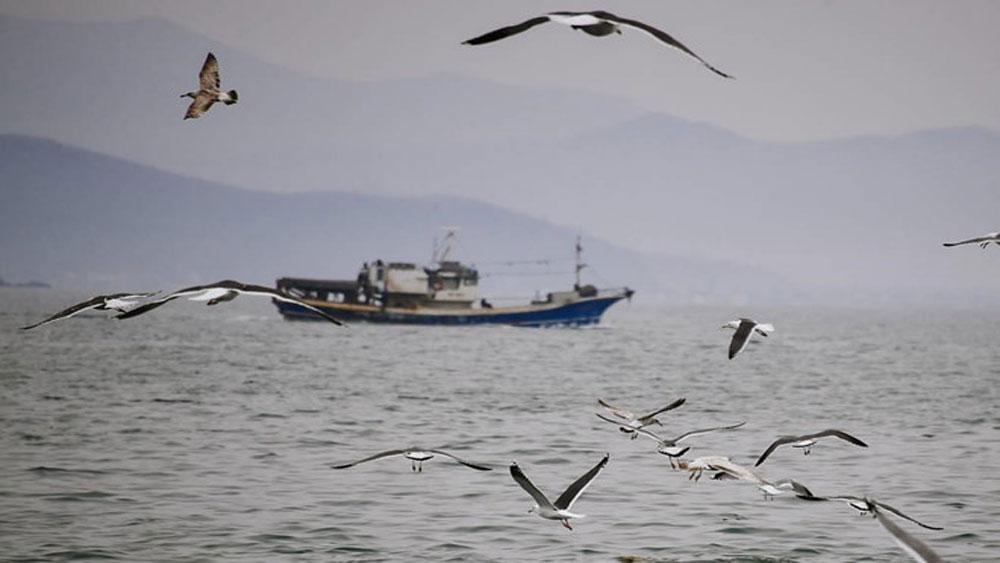 Triều Tiên bắt giữ thủy thủ đoàn trên một tàu cá Nga